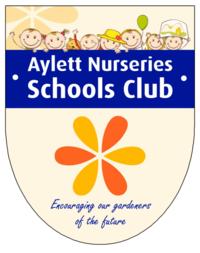 schools-club1