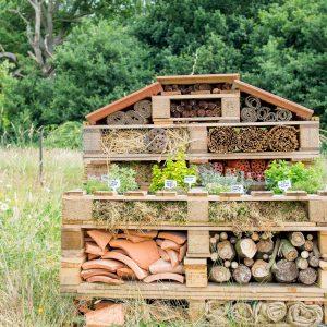 garden-construction