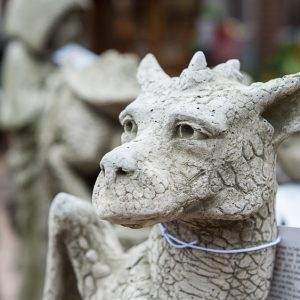 Pheberts dragon