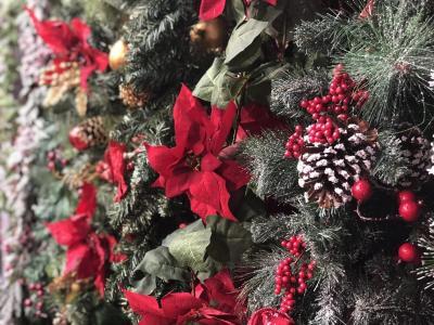 Christmas 2018-10